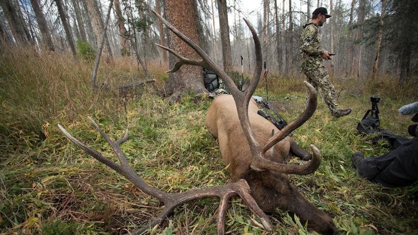 Archery bull elk taken in late September