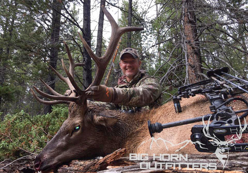 Archery bull elk taken with Big Horn Outfitters