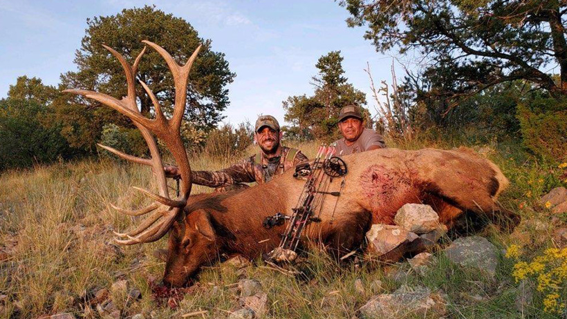 Archery bull elk taken with LOH Outfitters in New Mexico