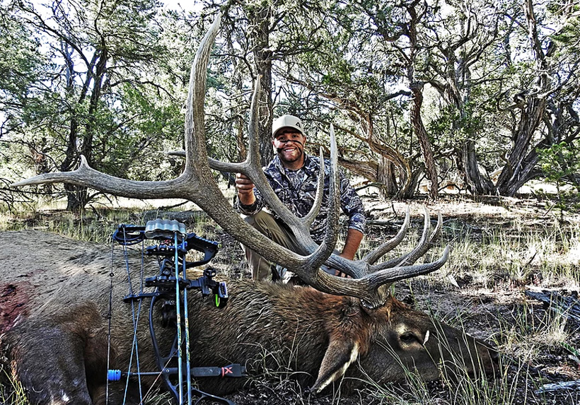 Archery bull elk taken with Rebel Ranch Outfitters