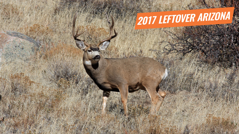 2017 arizona leftover licenses now available gohunt for Utah fishing license cost 2017