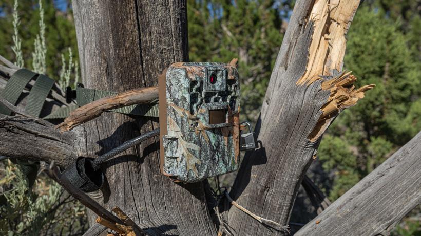 Arizona trail camera rule change update