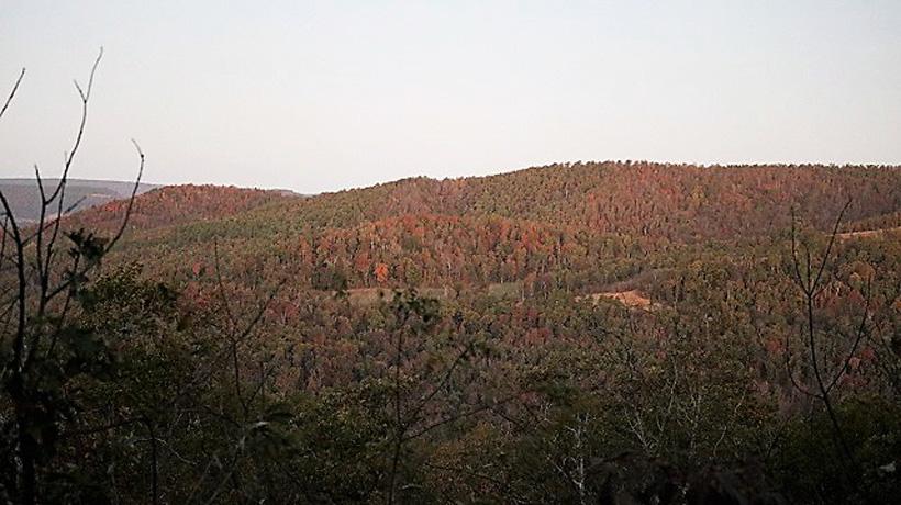 Arkansas elk hunting terrain