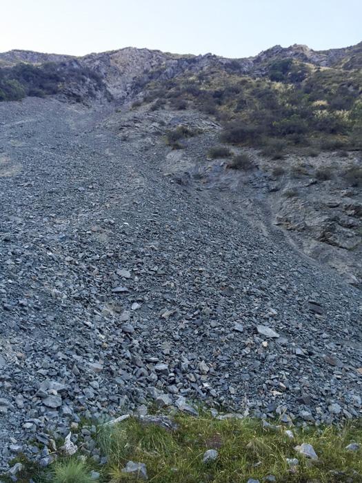 Avalanche chute where the tahr fell down