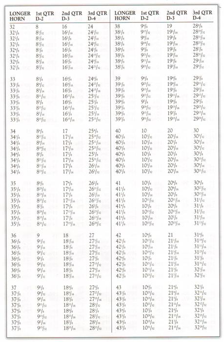 Bighorn sheep horn length measurement chart