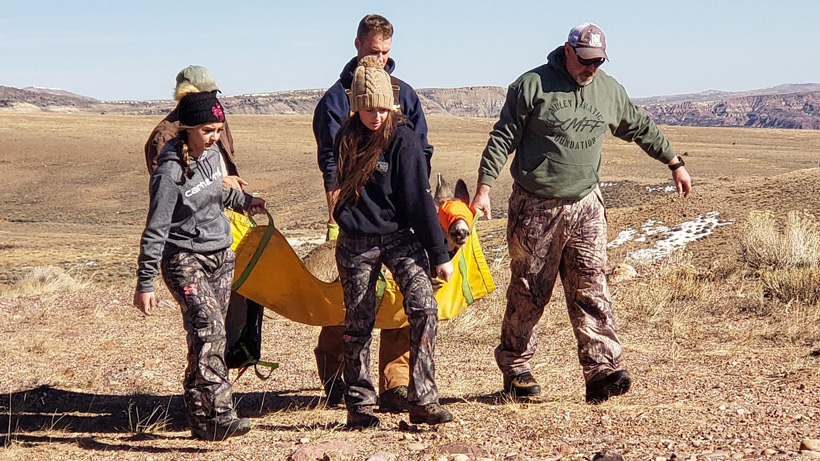 Boots on the ground helping mule deer