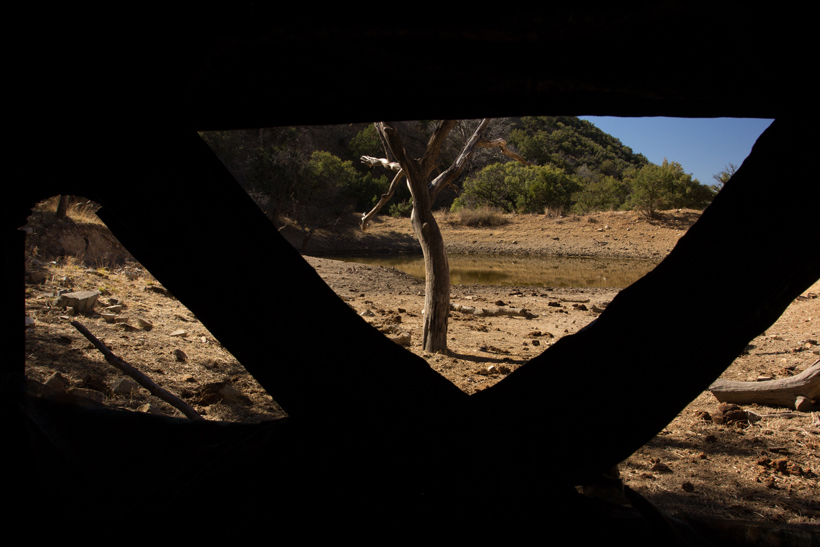 Bowhunting Coues deer from a groundblind