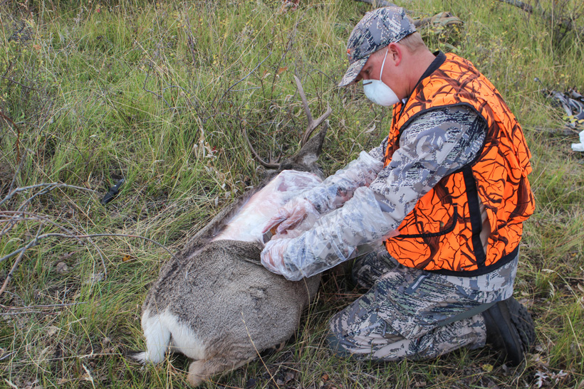 Brad Tribby taking allergy precations while cutting up a deer