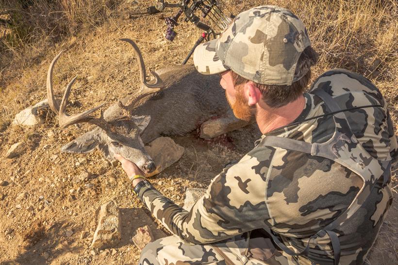 Miller Coues deer buck closeup