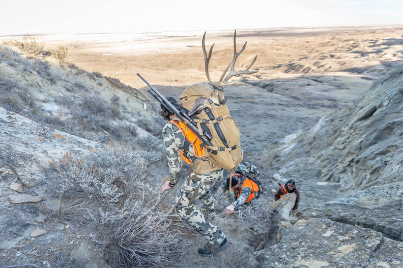 Brady Miller packing out a mule deer with Exo Mountain pack