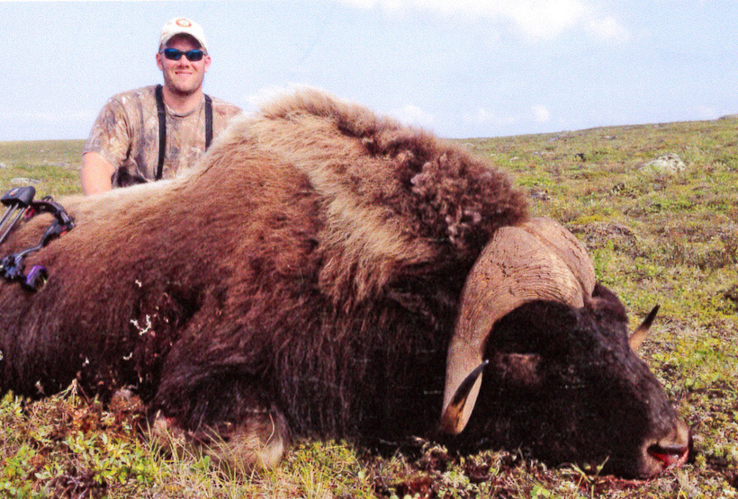 Brian Keith's potential world record muskox