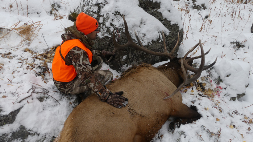 Bryan Campos with his bull elk