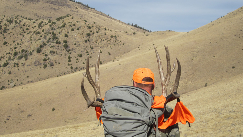 Bryant packing out his mule deer