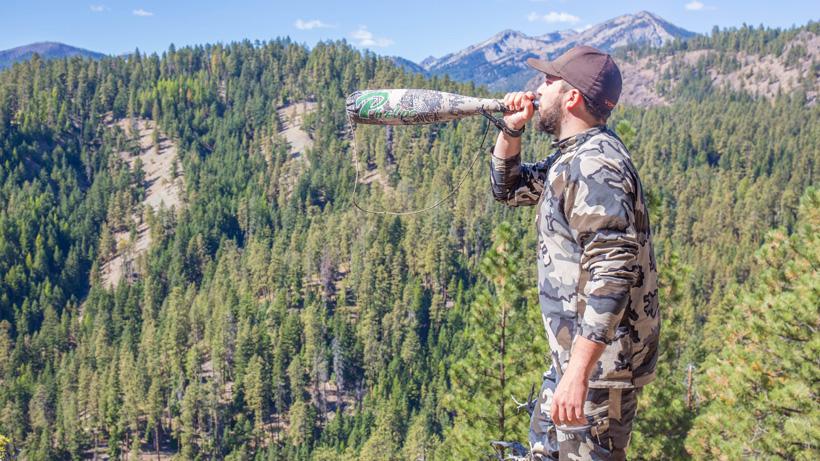 Bugling for Washington bull elk