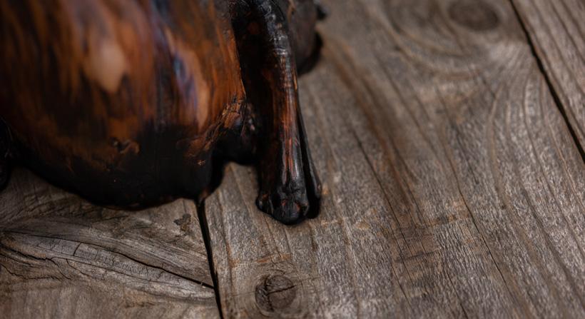 Burned stump on barn wood