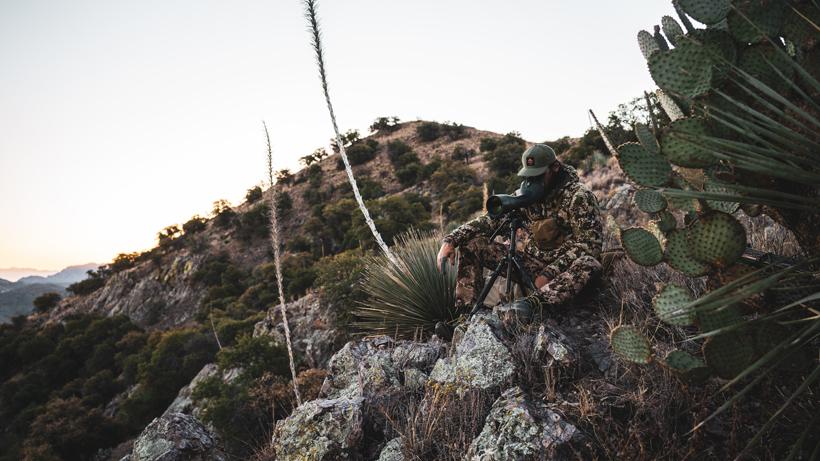 Changes coming to Arizona OTC archery deer