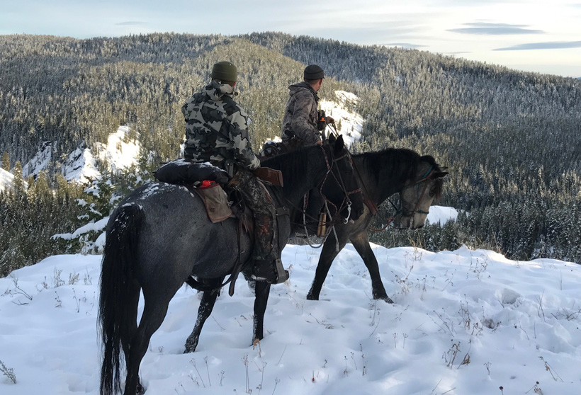 Checking for new elk country