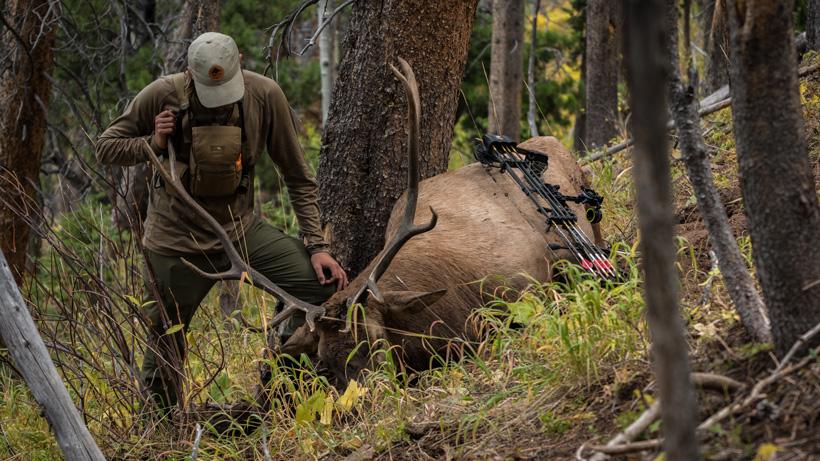 Chris Neville with OTC archery bull elk