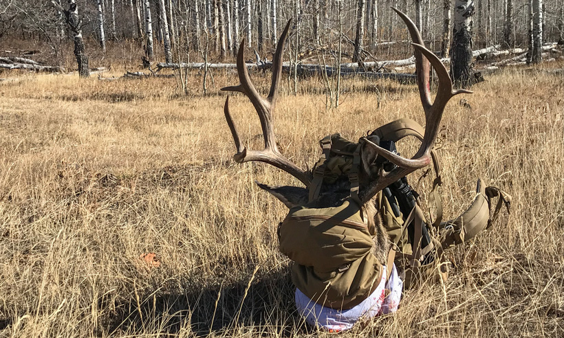Chris Porter 2017 Colorado mule deer in Mystery Ranch backpack