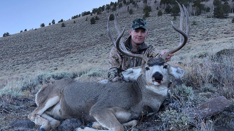 Classic Diamond Guide Service LLC. NV mule deer