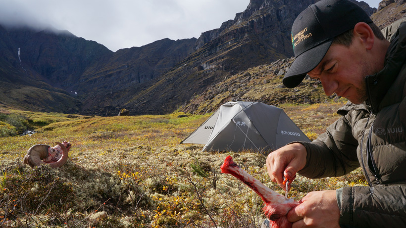 Cleaning Dall sheep meat back at camp