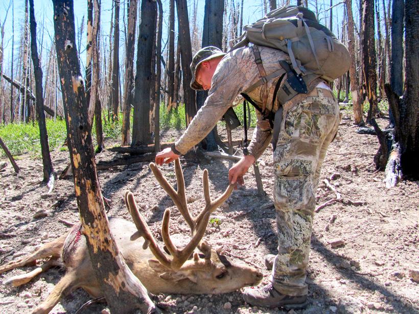 Clint Wirick walking up to his archery mule deer buck