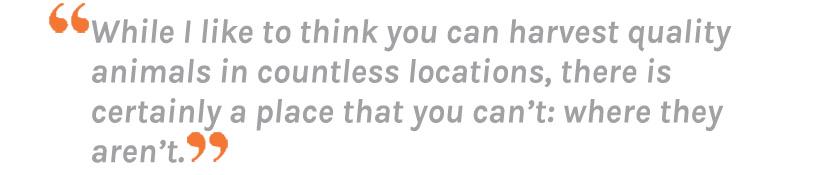 Dan Wilde quote about finding elk