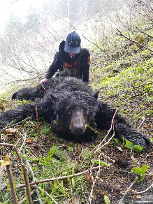 Danner Haskins 2017 bear
