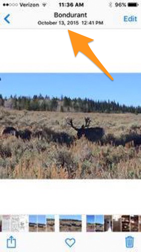 Dated photo after the 2015 mule deer season closed showing the buck alive