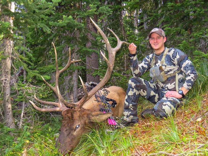 Dave Barnett Montana archery bull elk
