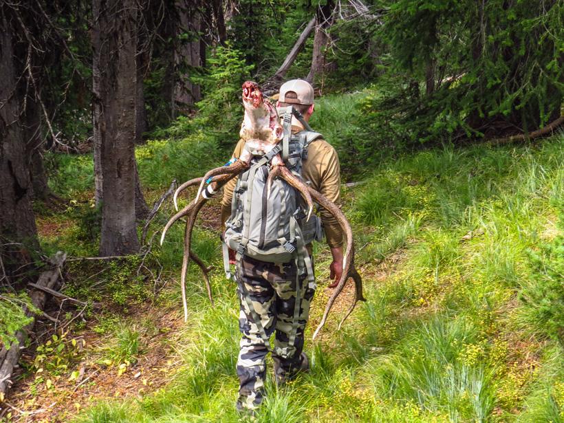 Dave Barnett packing out Montana archery bull elk