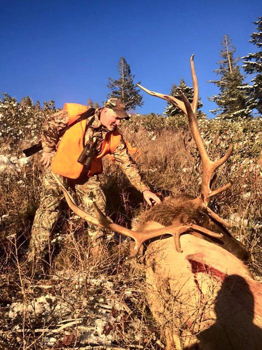 David Zavetsky 2015 Montana bull elk