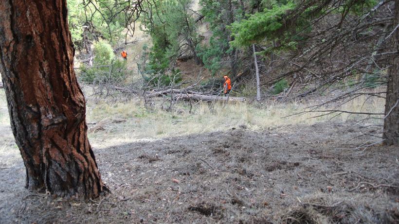 Downfall while elk hunting