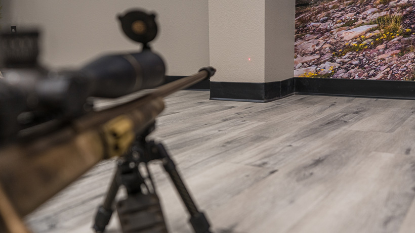 Dry fire rifle practice at home with a laser