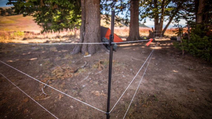 Electric fence while hunting in grizzly country