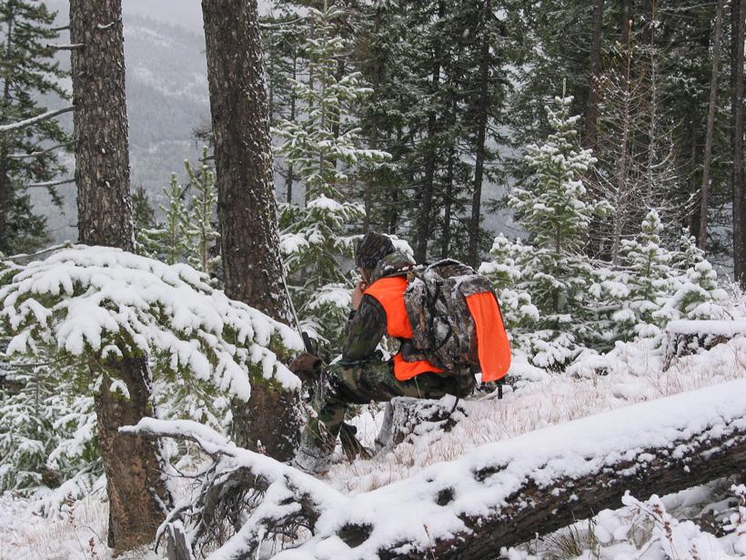 Elk hunter in Colorado