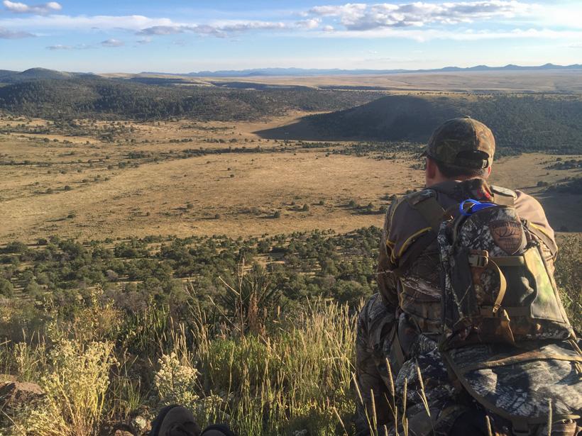 Elk hunting scenery in New Mexico