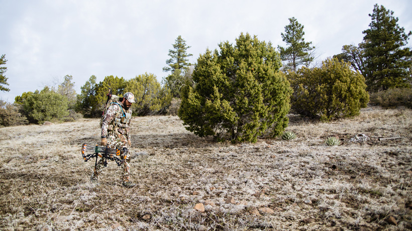 Endless stalking opportunities in Arizona for over-the-counter deer