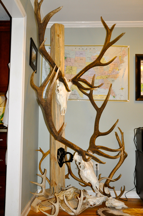 European antler mounting post