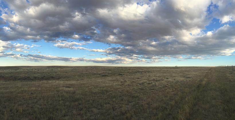 Endless and flat antelope terrain