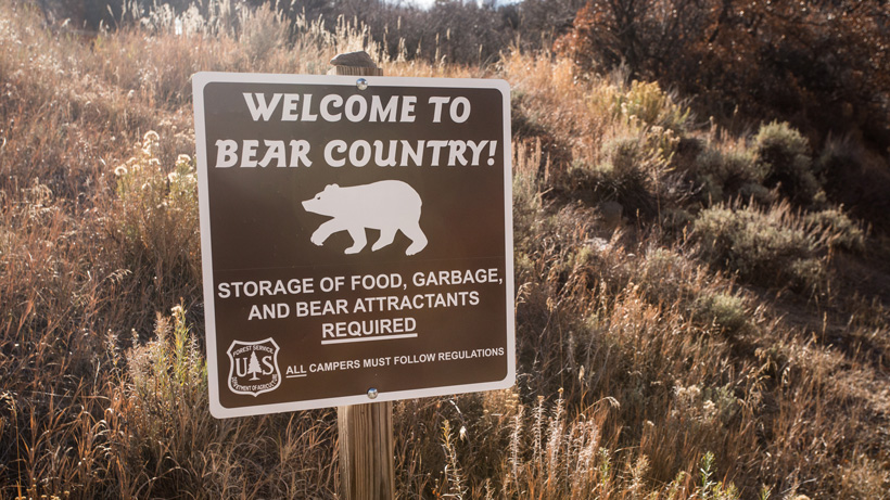 Forest Service bear warning sign