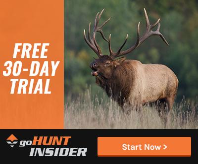 INSIDER Free Trial