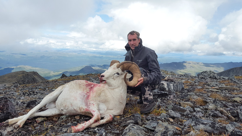 Friend holding up the Dall sheep