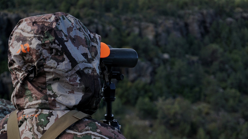 Glassing for bucks in Arizona