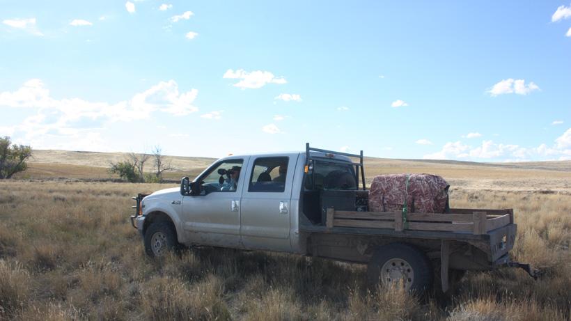 Glassing for antelope from truck