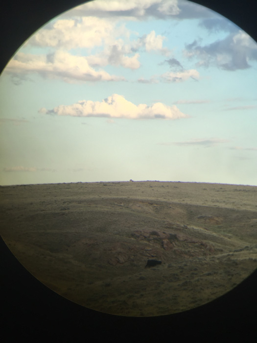 Glassing for antelope with spotting scope