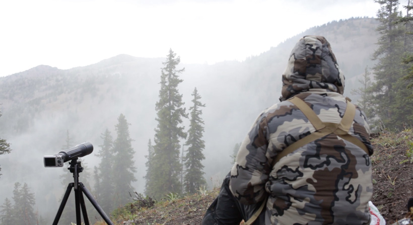 Glassing for bucks in the fog