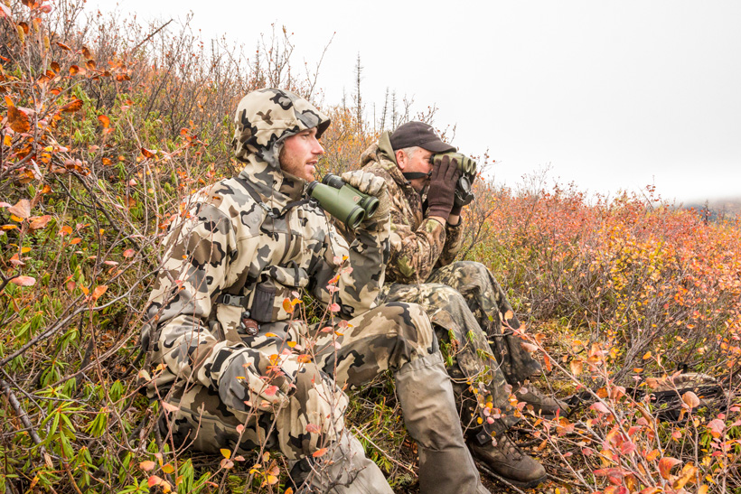 Glassing for moose in British Columbia