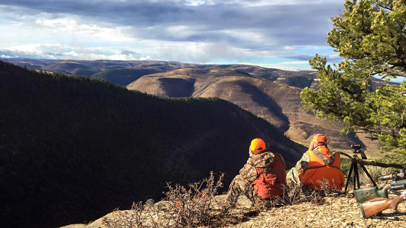 Glassing for mule deer bucks in Colorado