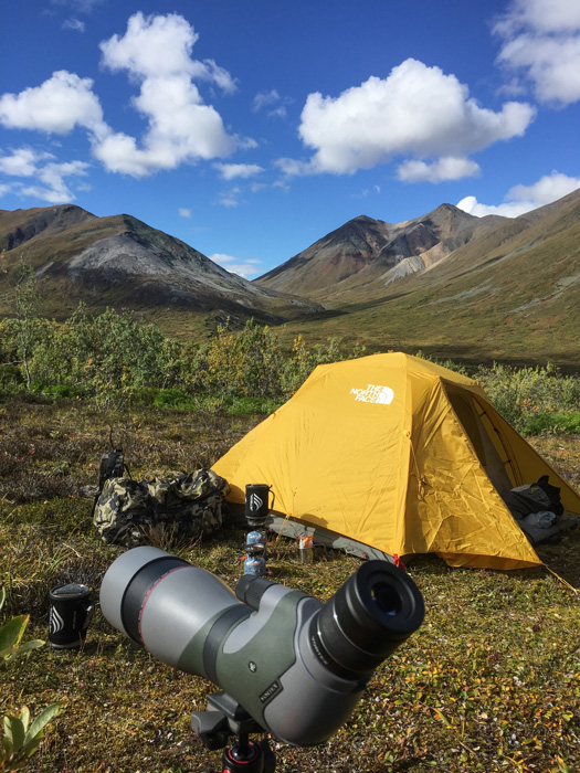 Glassing from camp in the mountains